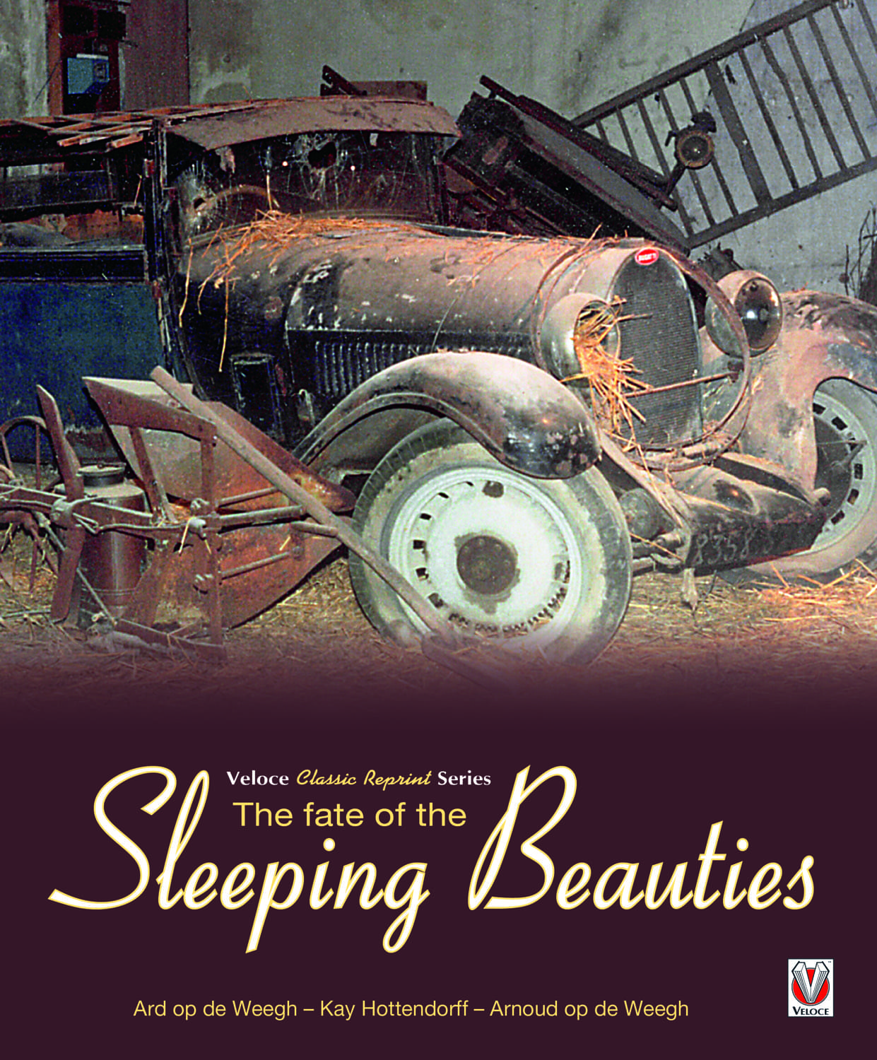 The Fate of the Sleeping Beauties – New in Paperback! cover