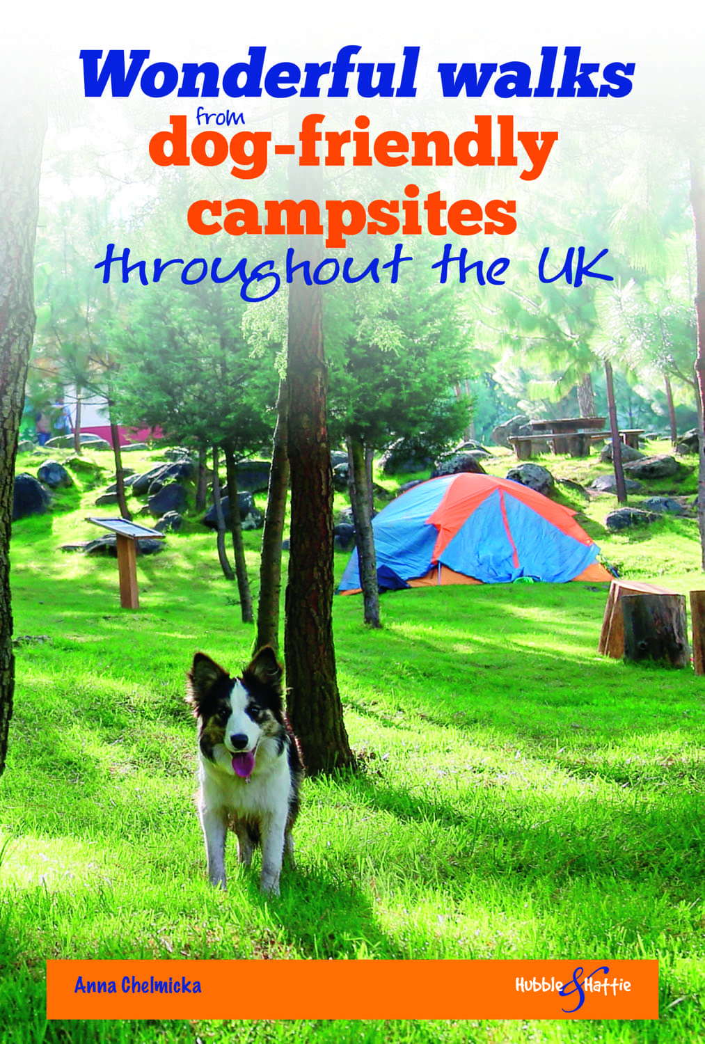 Wonderful walks from Dog-friendly campsites throughout the UK cover