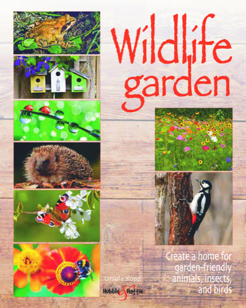 Wildlife garden – Create a home for garden-friendly animals, insects and birds
